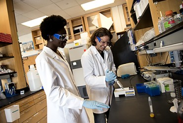 08/02/17 - BOSTON, MA. - Yaa Kyeremateng, S'19, works with Prof. James Monaghan in his lab at Northeastern University on Aug. 2, 2017. Photo by Matthew Modoono/Northeastern University