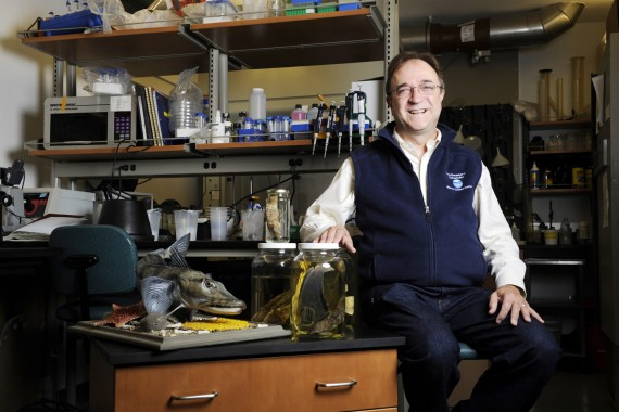 06/15/15 - NAHANT, MA. - William Detrich, Professor of Marine Molecular Biology and Biochemistry posed for a portrait in t...